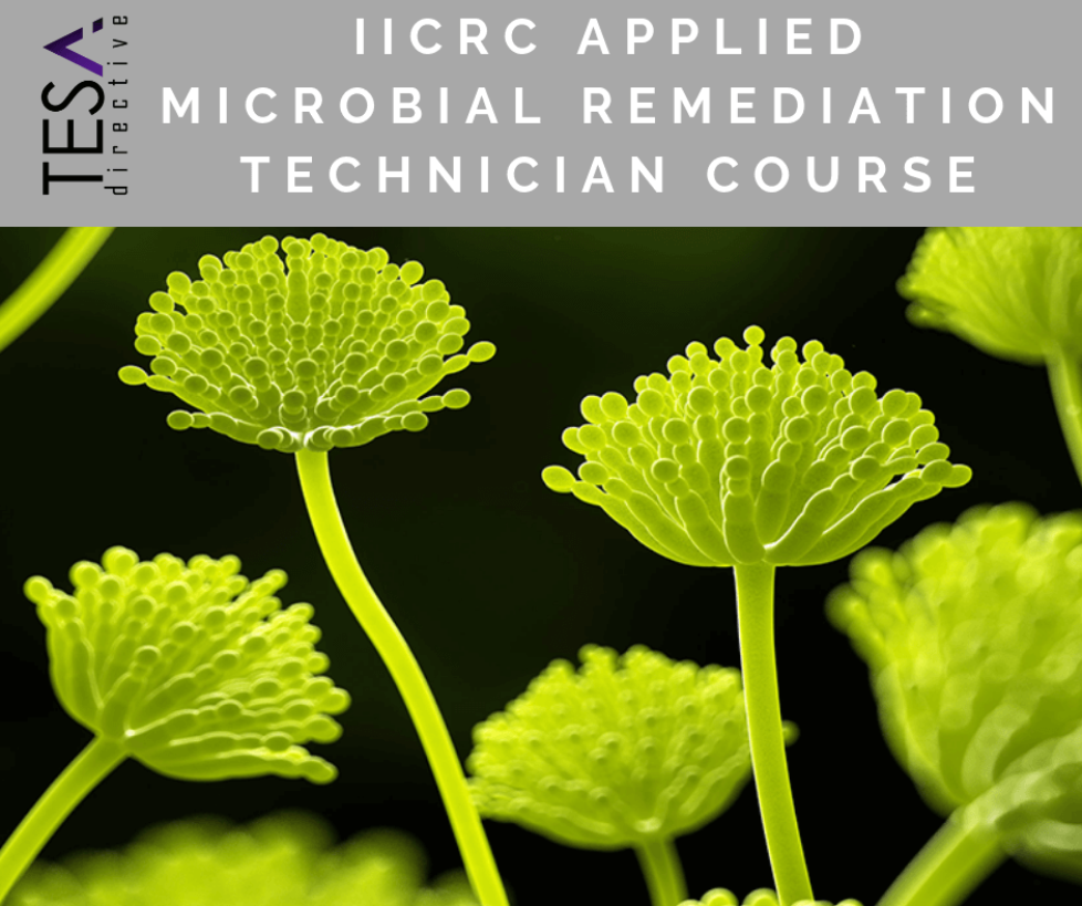 IICRC Applied Microbial Remediation Technician Course